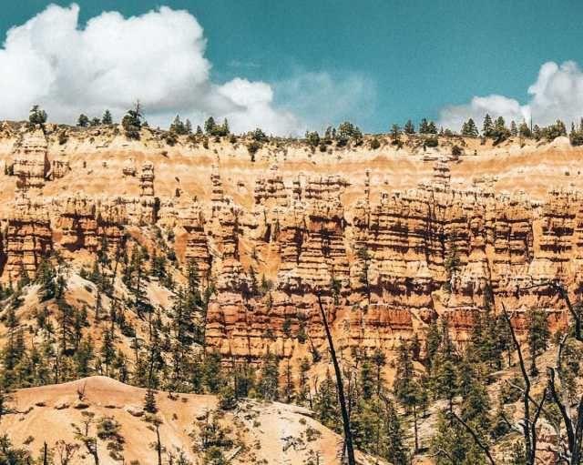 Ultimate Road Trip Hiking Utah National Parks Ruhls Of The Road Utah National Parks Utah National Parks Road Trip National Park Vacation