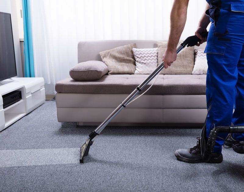 Hire Professional Carpet Cleaners