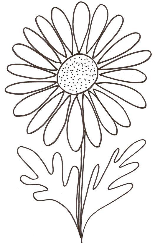 Comment dessiner une marguerite paintings pinterest - Une fleur dessin ...
