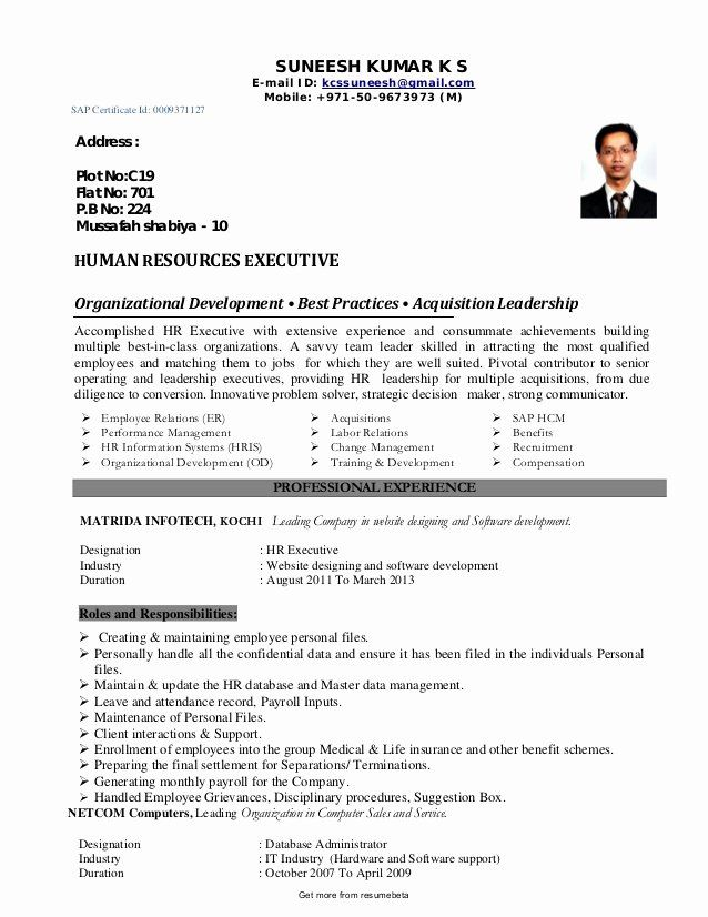 human resources director resume awesome functional