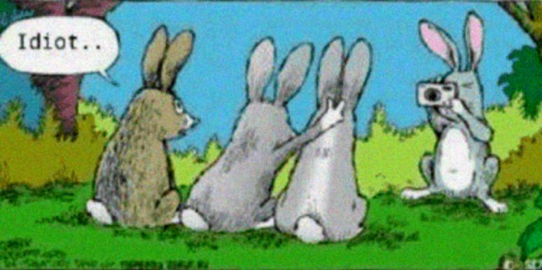 16 Funny Easter Memes 2019 15 Best Easter Memes Of All