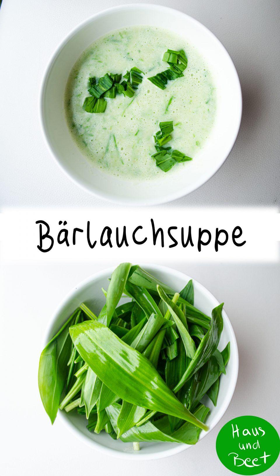 Bärlauchsuppe – einfaches Rezept mit frischem Bärlauch - Haus und Beet