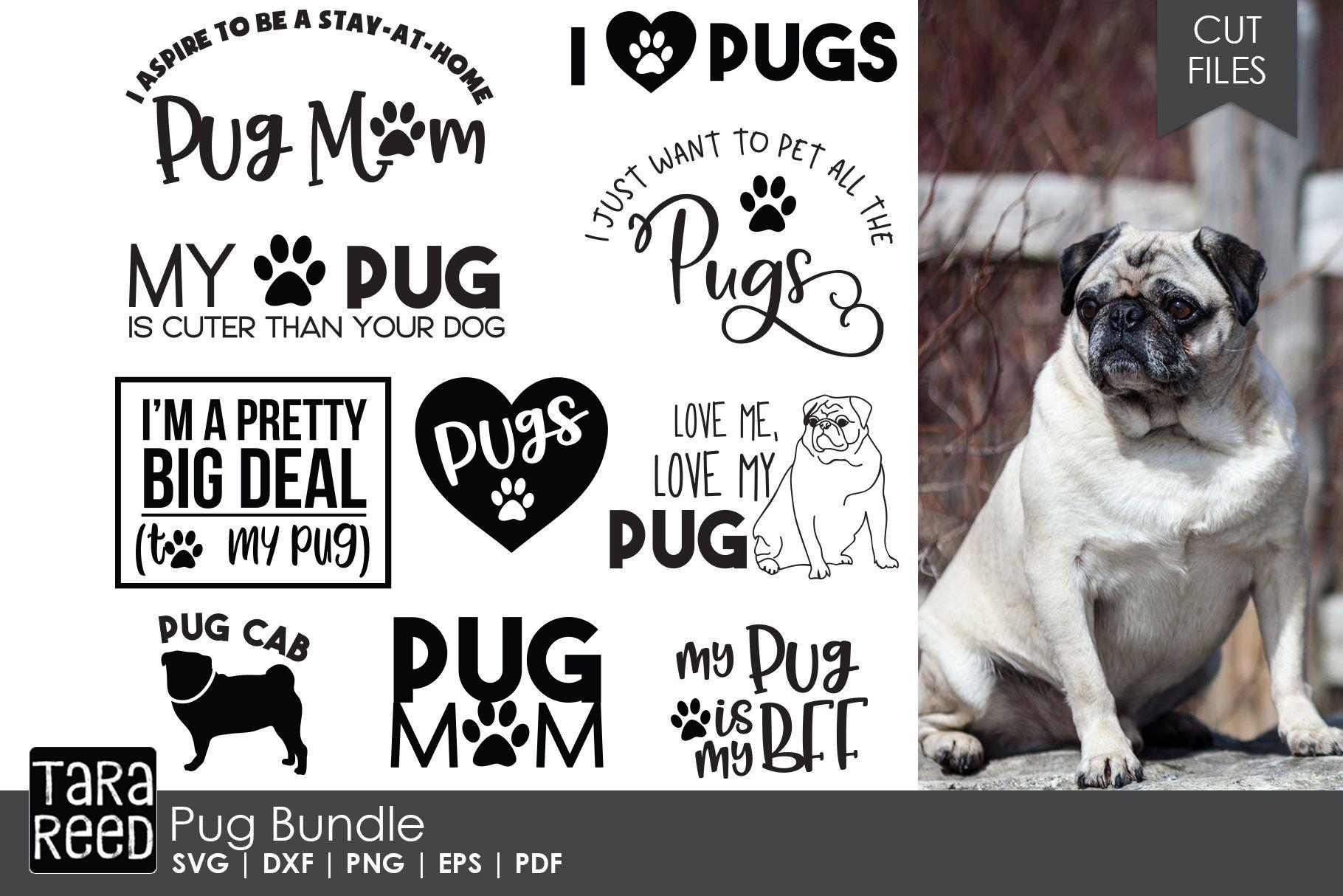 Pug Bundle Pugs Pug Mom Svg