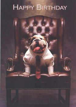 Bulldog Birthday Card Happy Birthday Dog Bulldog Happy Birthday