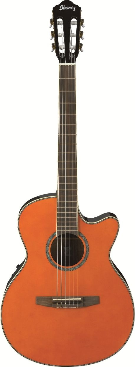 Ibanez Aeg10netng Acoustic Guitar Guitar Guitar Design Online Guitar Lessons