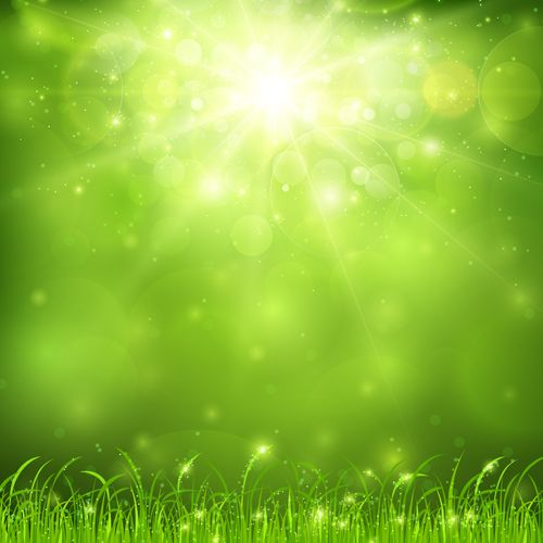 Green Nature And Sunlight Background Vector Fundos