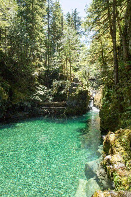 Hiking Opal Creek (Oregon)