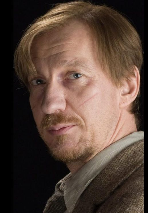 Remus Lupin Lupin Harry Potter Harry Potter Characters Remus Lupin