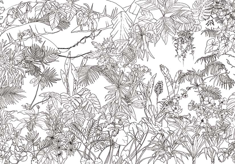 Papier peint original & Décor mural en édition limitée
