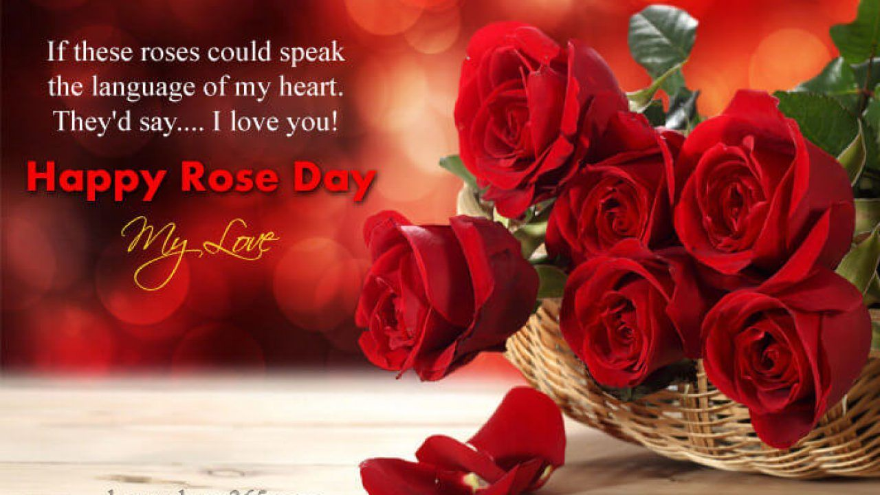 Happy Rose Day Images Wallpapers Photos 2020 In 2021 Happy Rose Day Happy Rose Day Wallpaper Happy Rose Day Images