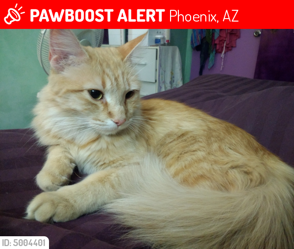 Lost Wiki LAST SEEN: April 21, 2018 Phoenix, AZ 85029 Near W