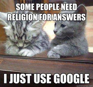 googlin' kitteh