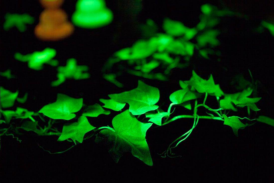 Glow In The Dark Spray Paint Ideas Part - 24: 10 Must-Makes For A Glow-in-the-Dark Bonanza