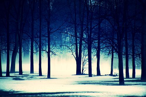 SUNO Winter Wonderland