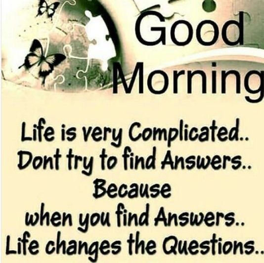 62 Good Morning Saying To Make Your Day Positive And Beautiful Msg