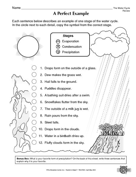 Water Cycle Stages Practice Sheet