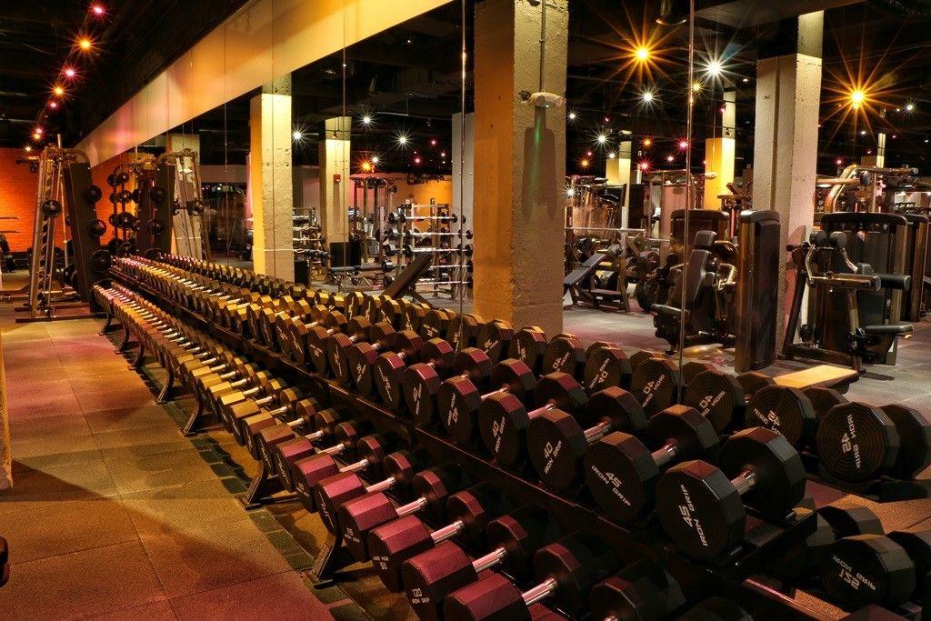 Gallery david barton gym lookbetternaked gym design