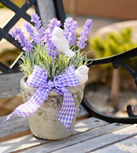 Lawenda Na Balkonie I Tarasie Uprawa Rozmnazanie Przycinanie Lavender Decor Flower Arrangements Cozy Decor