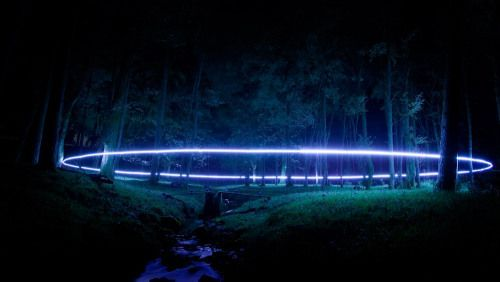 Enclosure by Robbie Colman and Jo Hodges. Simple nature/forest light art installation #lightartinstallation Enclosure by Robbie Colman and Jo Hodges. Simple nature/forest light art installation #lightartinstallation