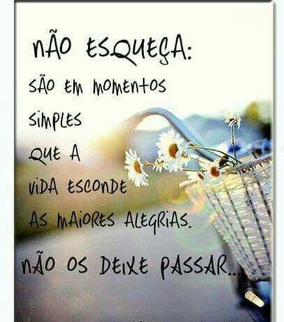 A Felicidade Está Nas Coisas Simples Mensagens Frases Quotes E