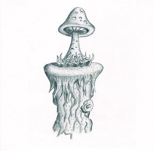 mushroom drawing | Pilze / Mushrooms | Pinterest | Hongos, Setas y Mundo