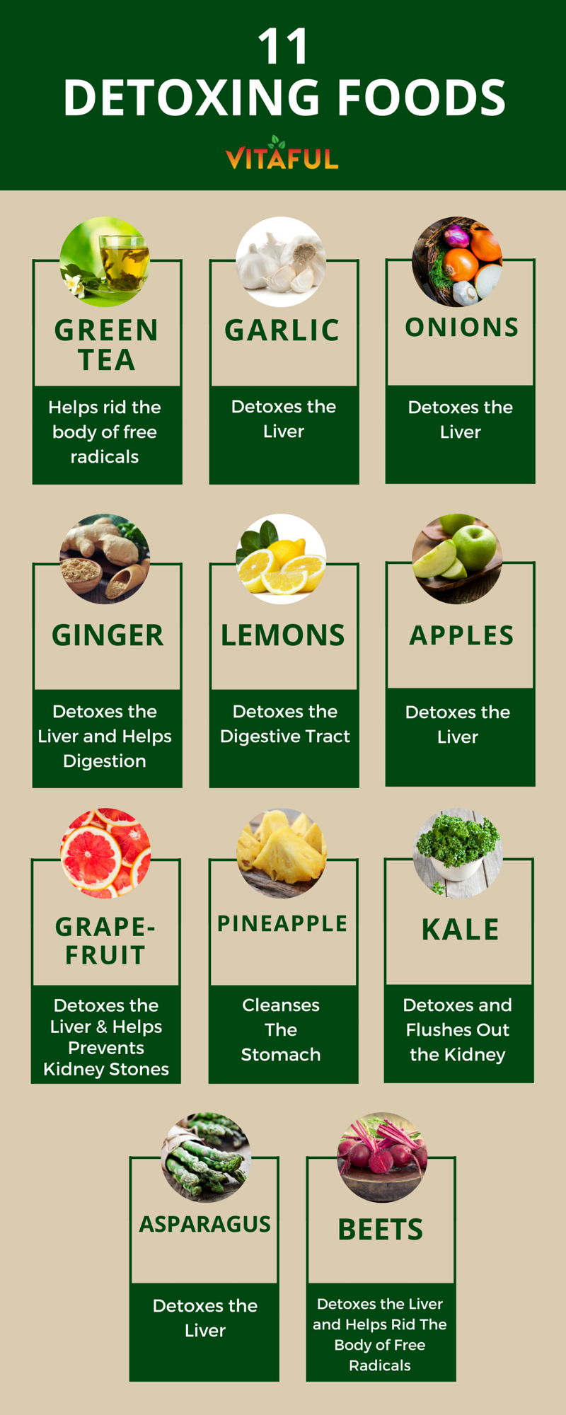 11 Foods That Naturally Detox The Body Holistic