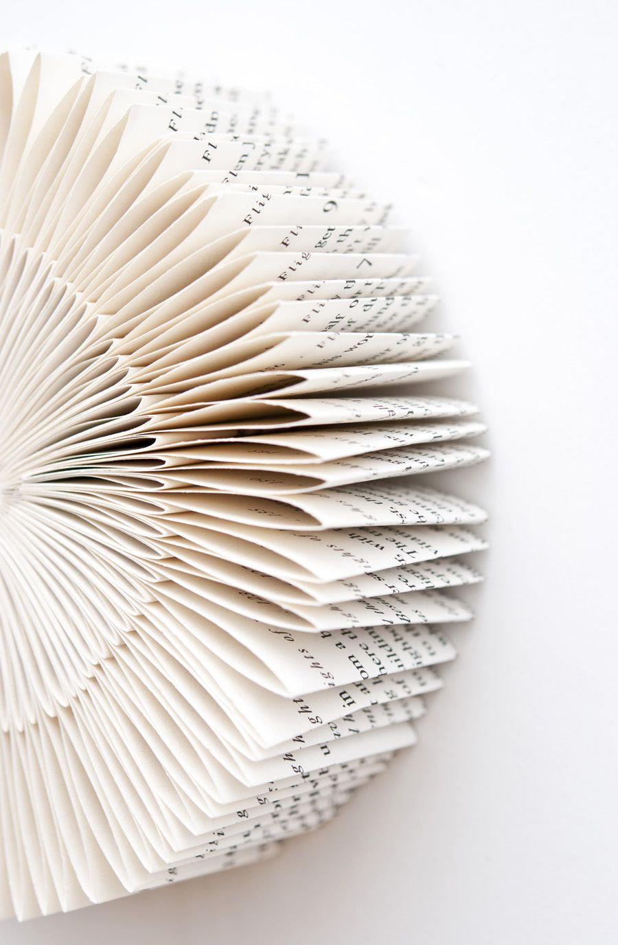 Pleated Language by Lisa Occhipinti This photograph will be used as the cover art for an upcoming book titled The Artists Library, due out spring 2014!