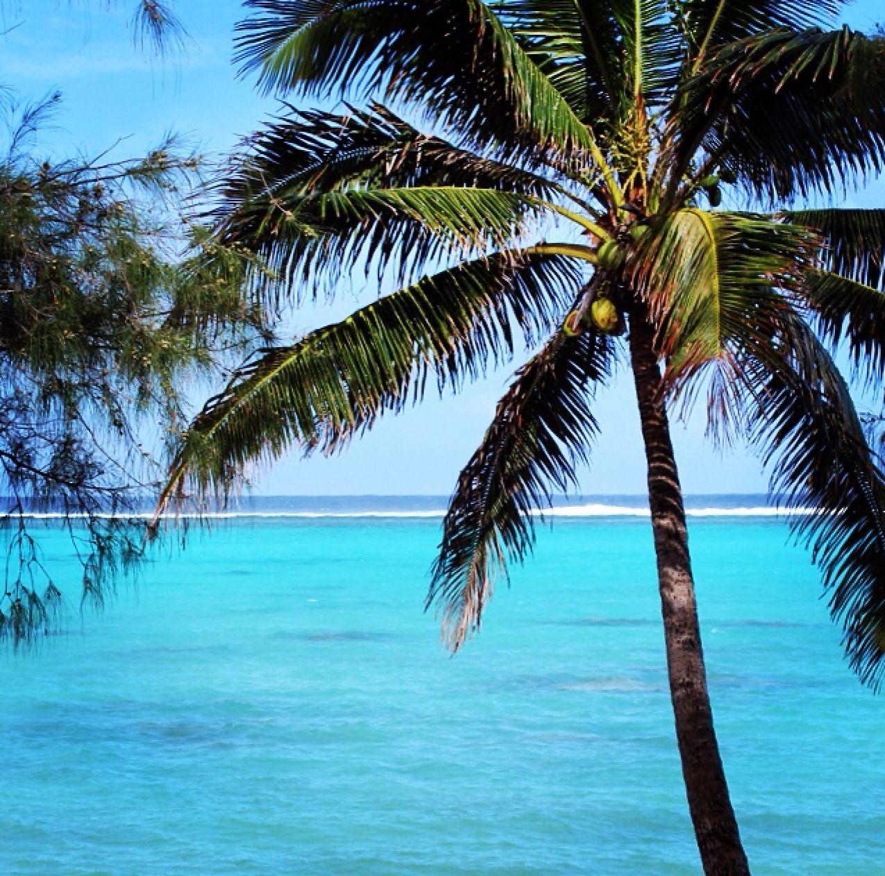 Cook Islands Rarotonga Beach: Cook Islands, Rarotonga Cook Islands, Island