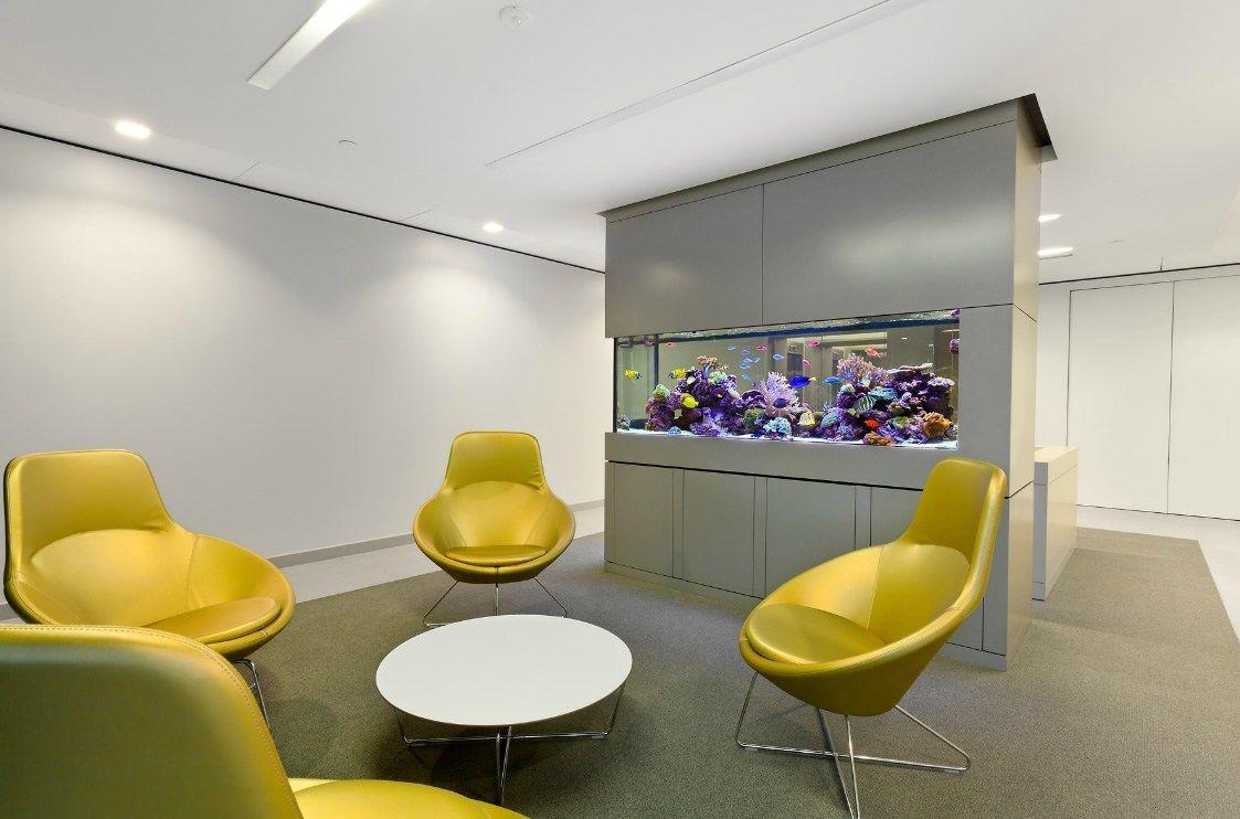 Aquarium Office Kantoor Ruimte Ruimte