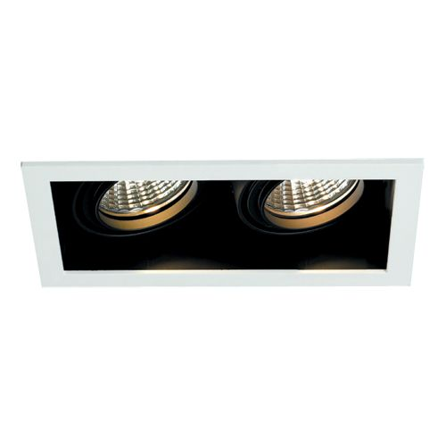 Recessed Double Downlight