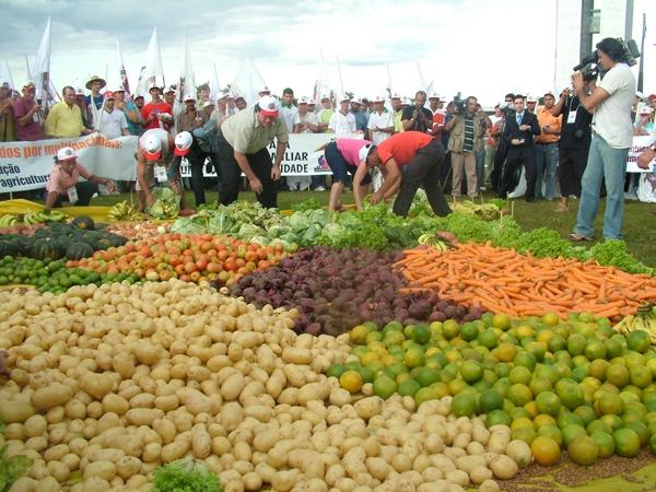 Agricultura Familiar é a Grande Responsável pelo Processo