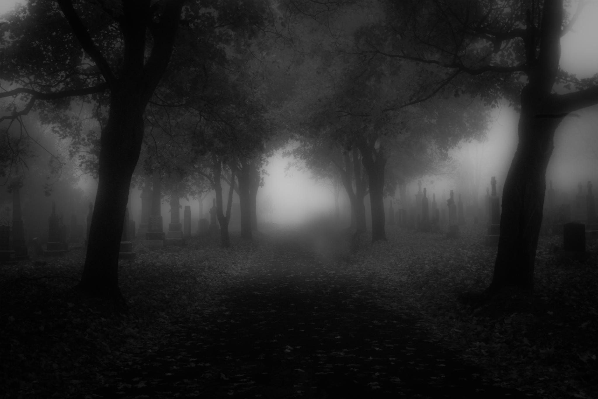 Evil Wallpapers Download Free Evil Wallpapers, Photos 1131