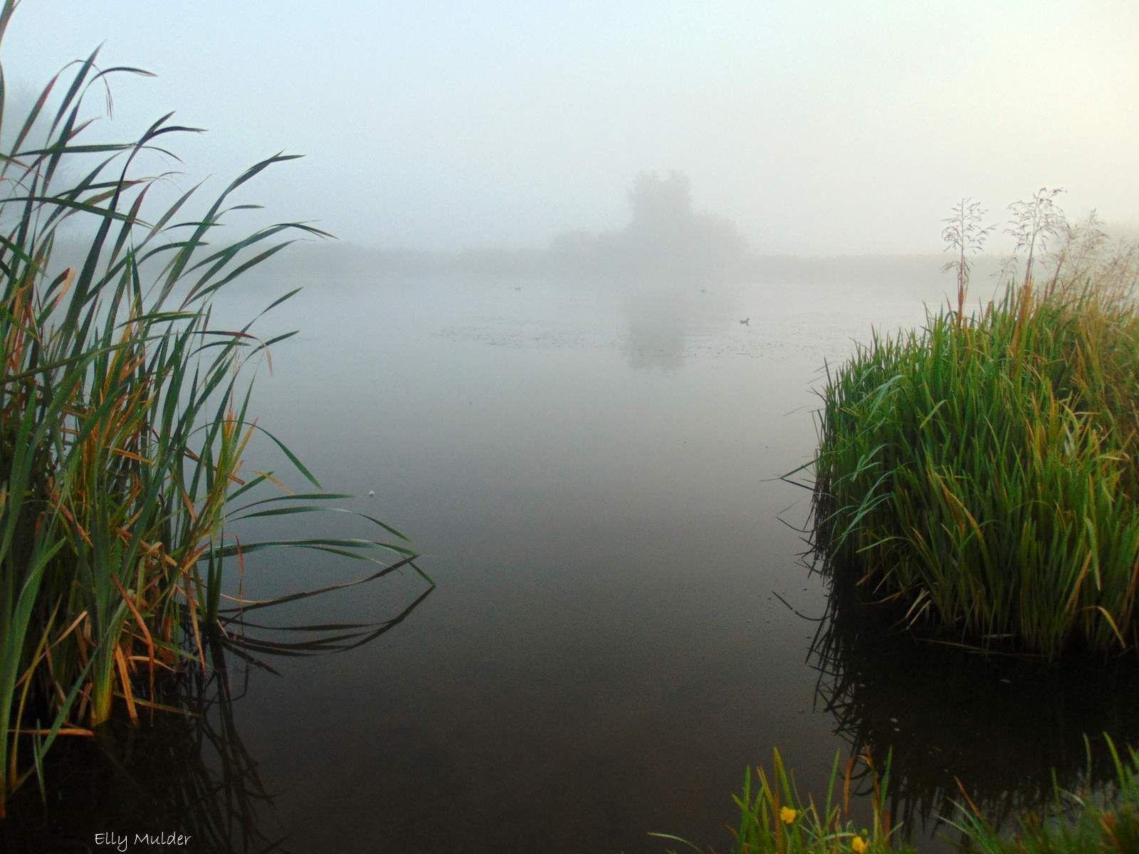 #mist #fogg #landschap #landscape #water