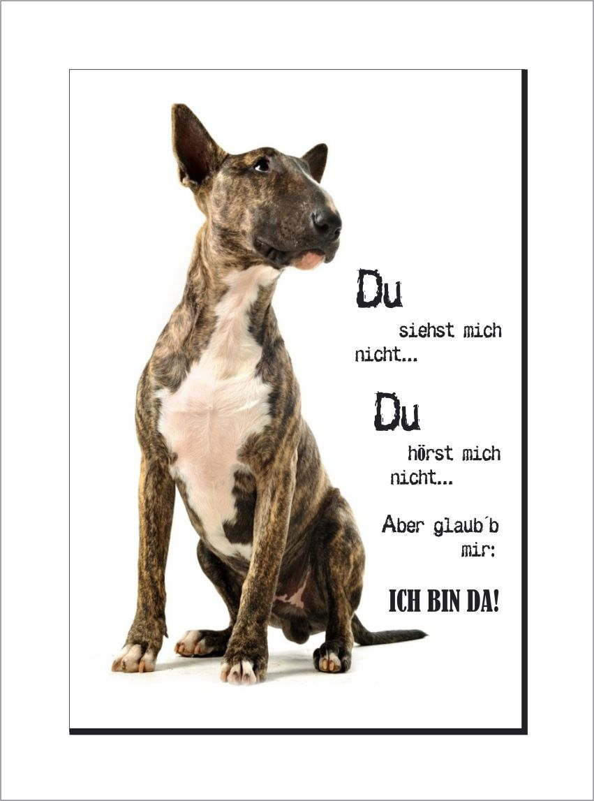 Artikelnummer Ai 3895 Dd Name Bullterrier Schild Du Siehst Mich Nicht Warnschild Hund Bullterrier Bullterrier Lustig