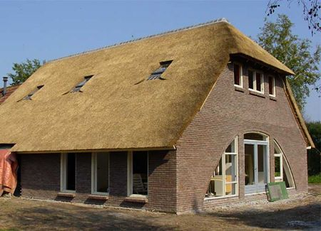 Thatch Roof Modern Tiny Houses Pinterest Thatched