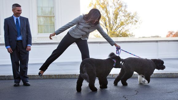 First Pooches Sonny And Bo Are The Stars Of The White House