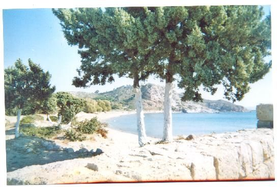 Kefalos, Greece: Ag. Stefanos beach