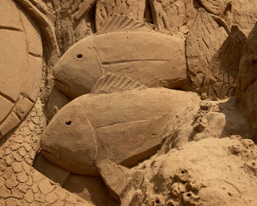 Sand sculpture at the Arts Festival. #sandsculptures #sandart