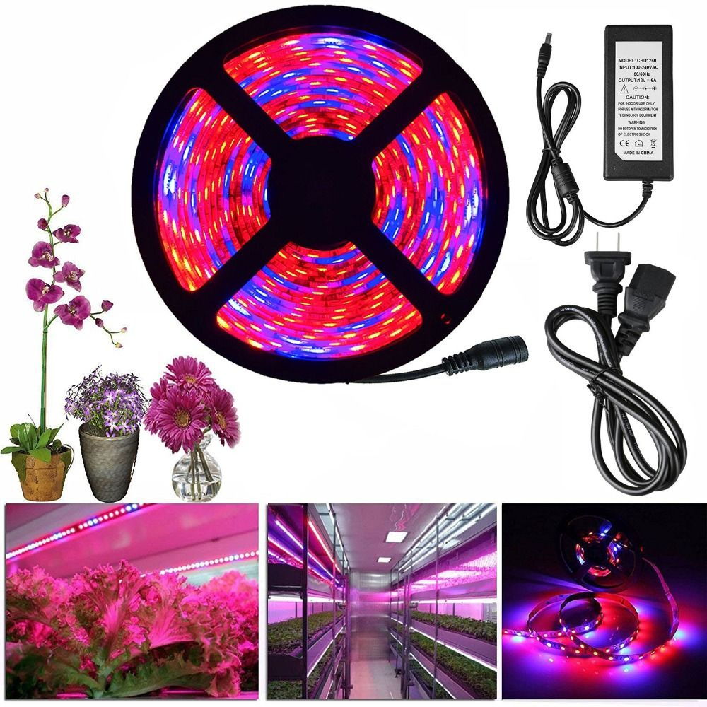 Led Grow Light Full Spectrum Dc 12v 5050 Aquarium Greenhouse Plant Growing Light Set Adapter H Grow Lights For Plants Grow Lights Greenhouse Plants