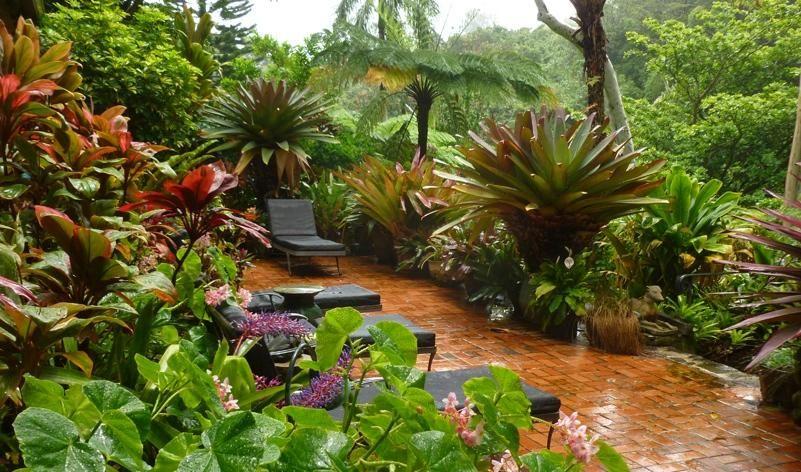 tropical garden furniture set idea photo tropical garden on attractive tropical landscaping ideas id=69721