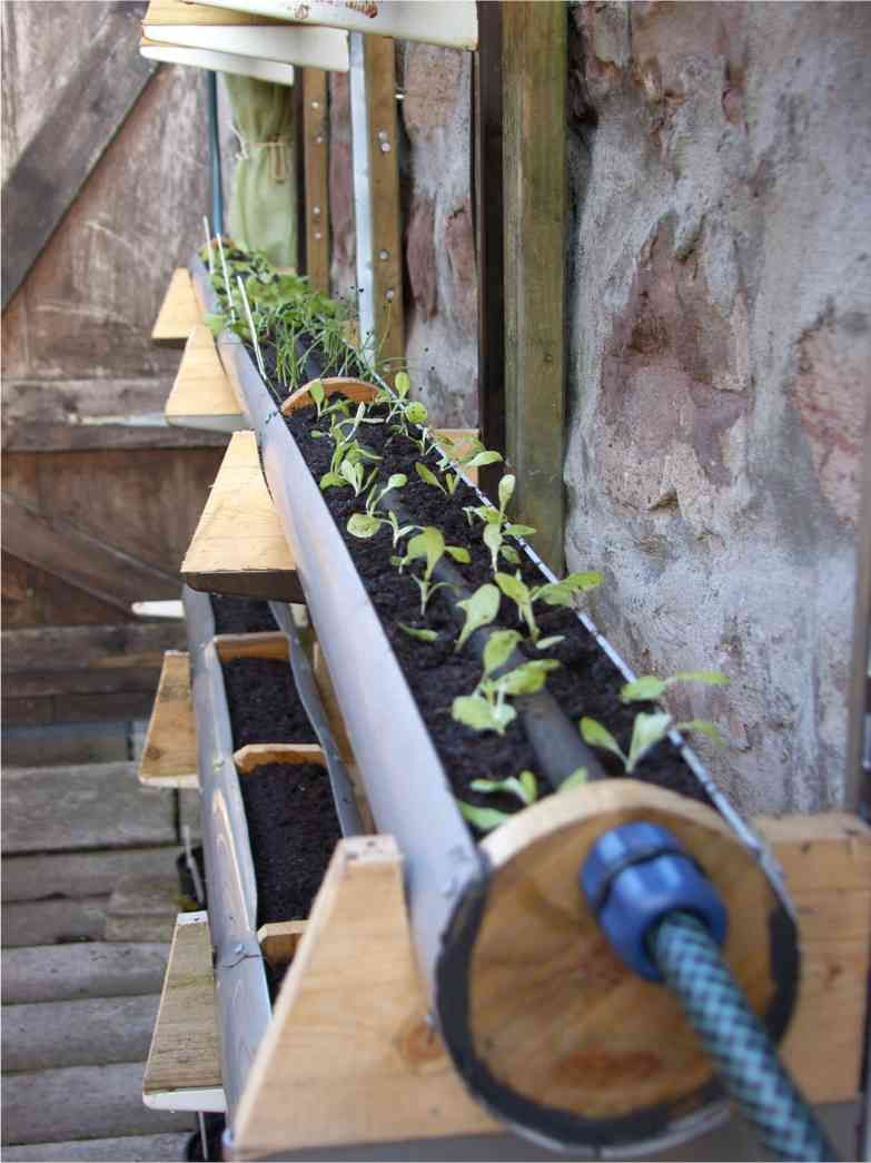 unique gutter garden project from inverness scotland the