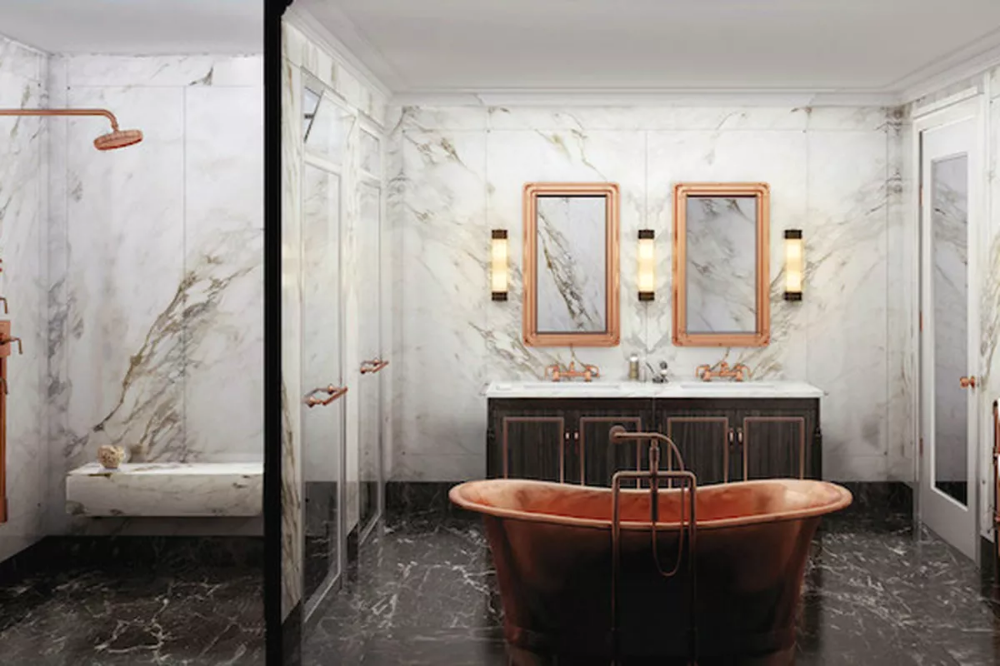 Toilet Room Within the Bathroom: The Ultimate Luxury or Just Absurd?