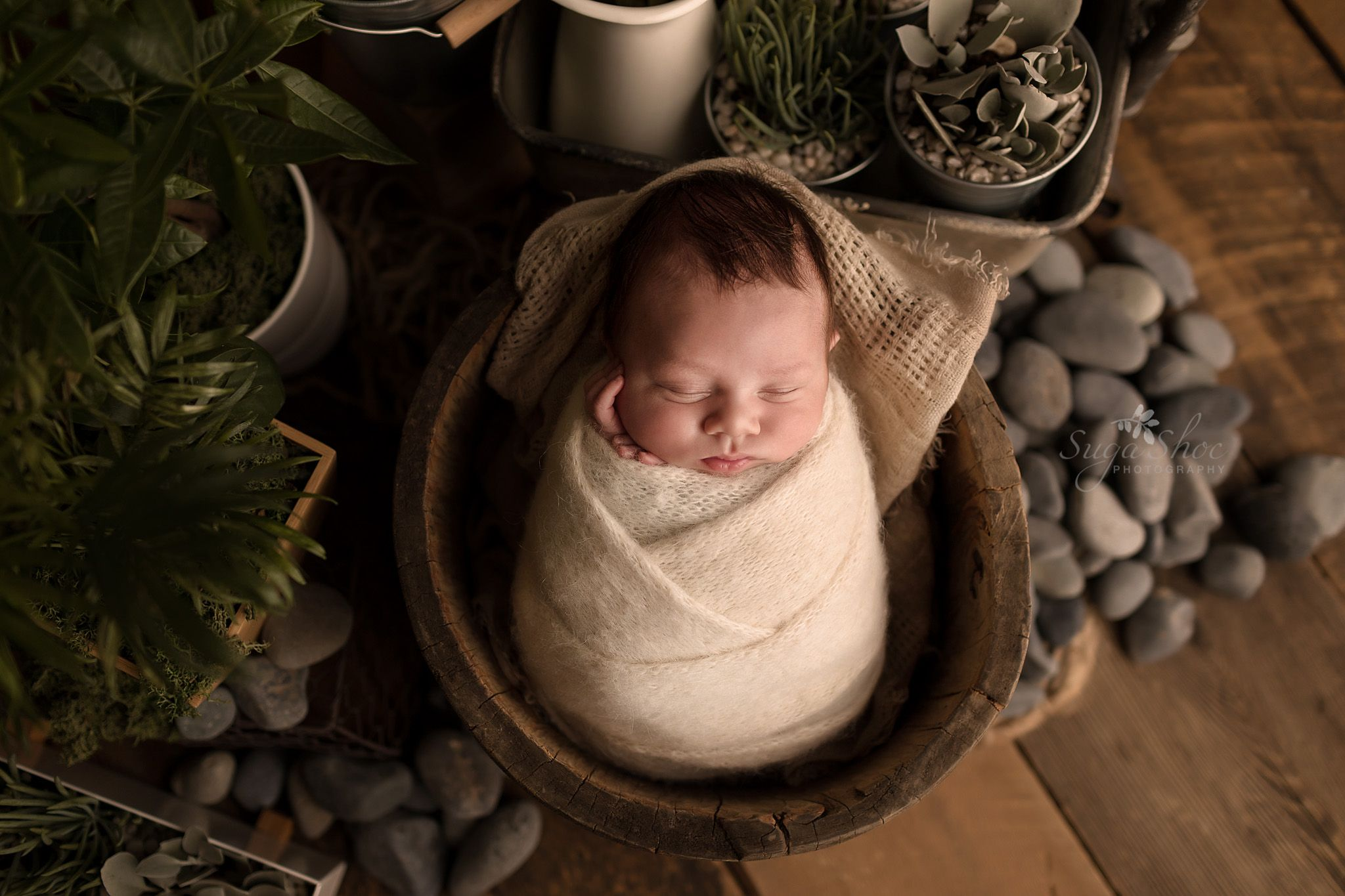Newborn pose jungle theme baby wrapped up in wooden bucket with plants and rocks in background
