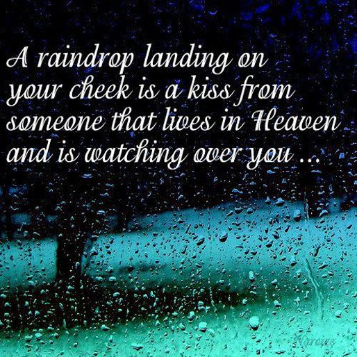 Quotes About Life Rain Drops Quotes Inspirational Words