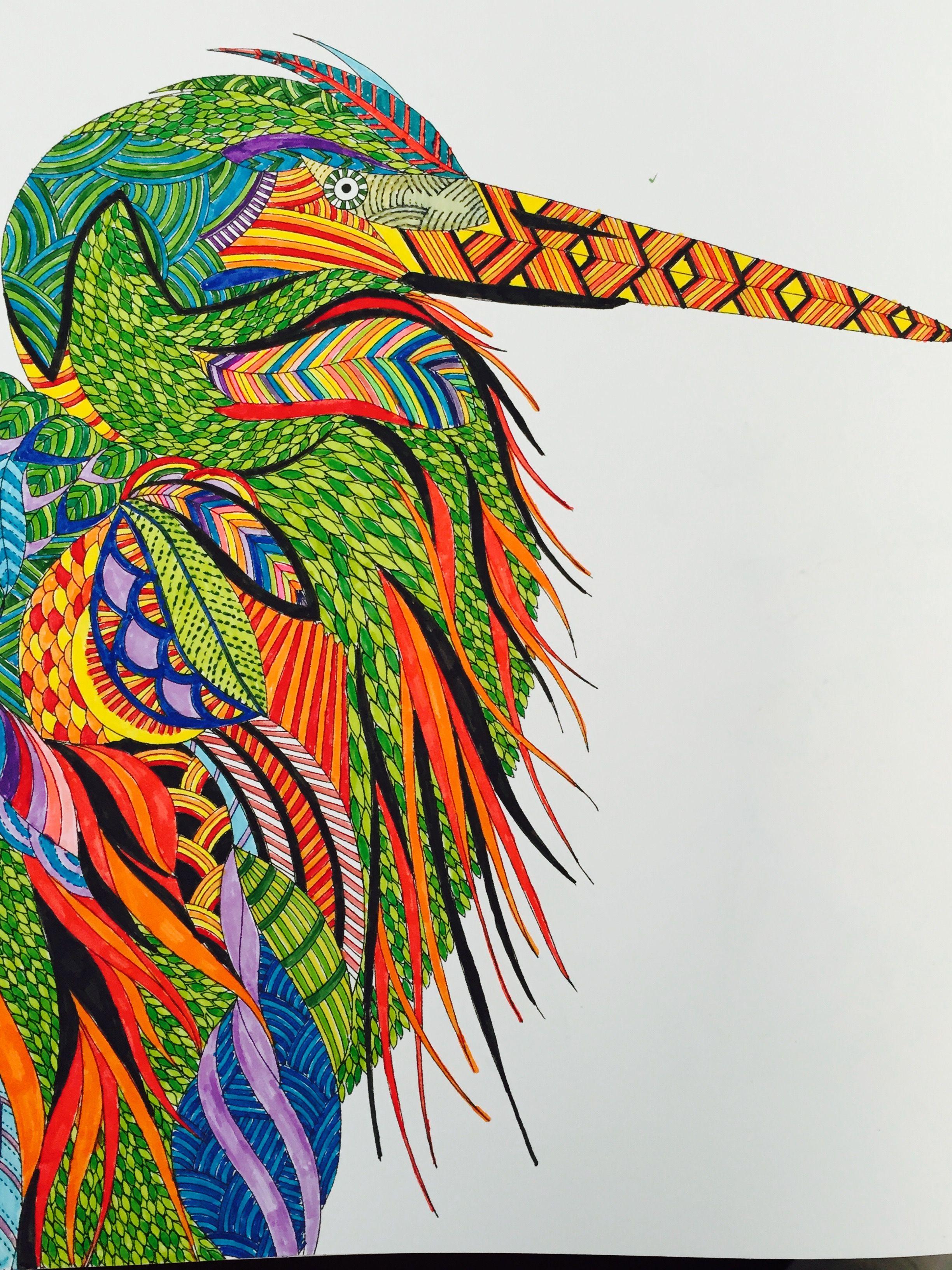 Millie Marotta Animal Kingdom Bird Using Connector Pens A Colour Scene Found Onlone