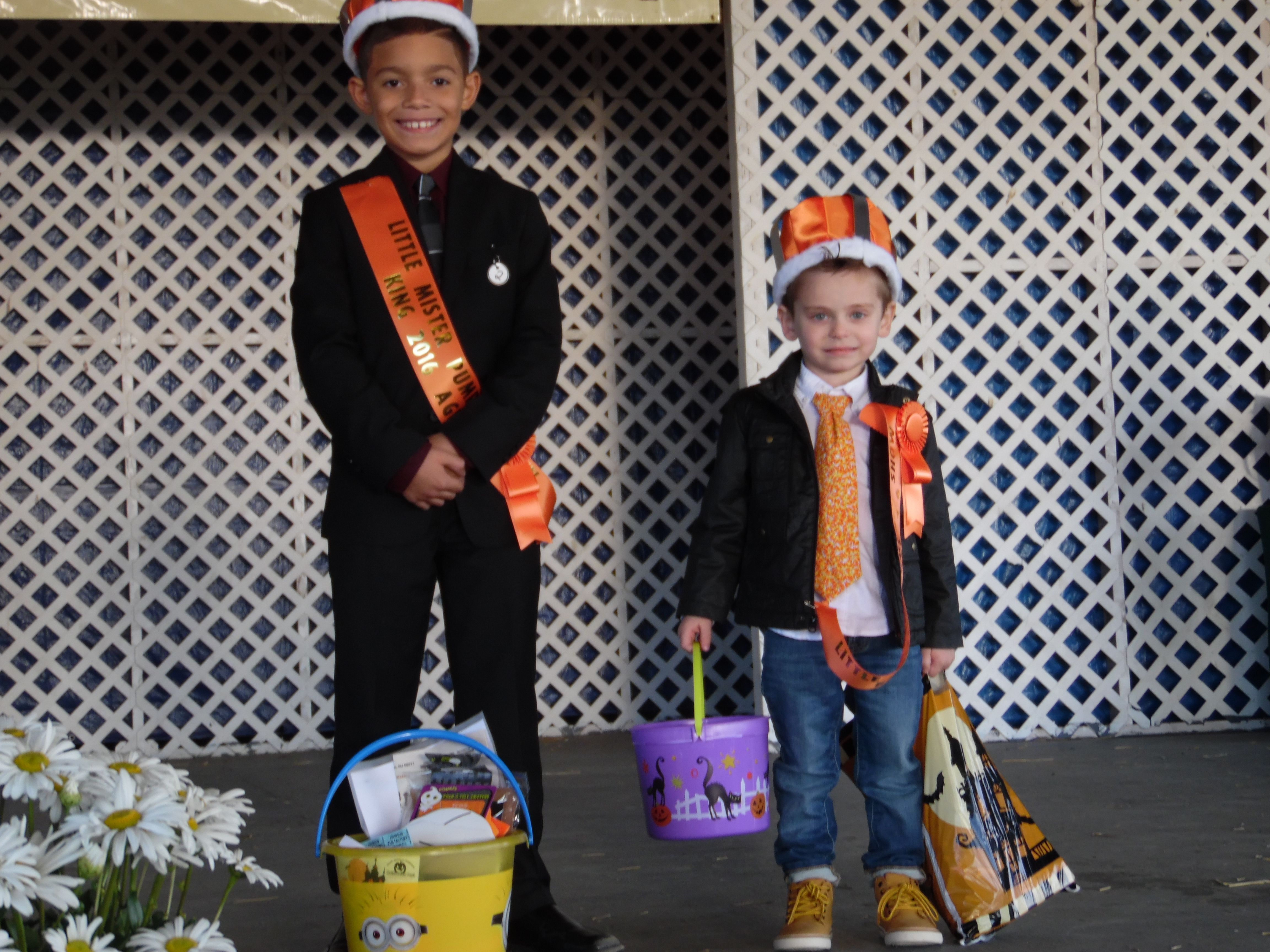 Pin by B & K Enterprises on Pumpkin Pageant 2018 Pumpkin