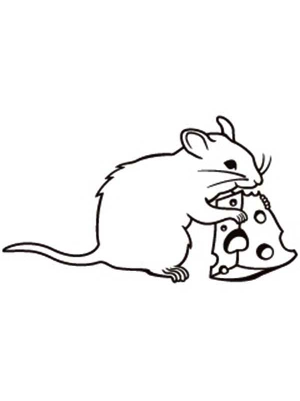 Mouse And Rat Eating Cheese Coloring Pages Bulk Color Topolino