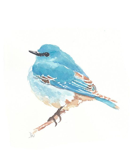 Original Bird Watercolor Mountain Bluebird Animal Illustration
