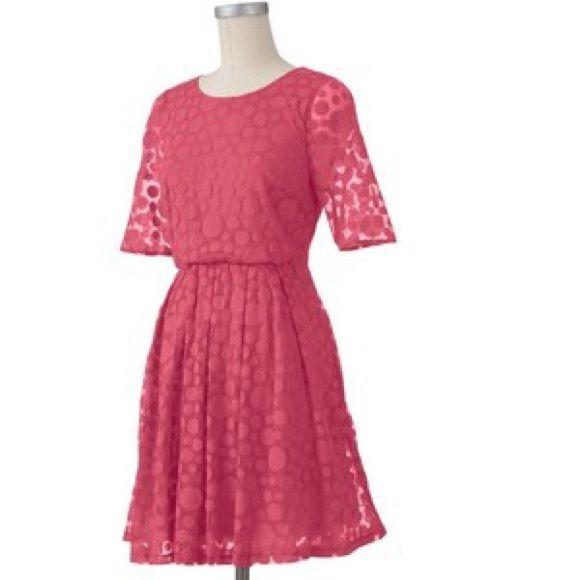 LC Lauren Conrad dress LC Lauren Conrad pink dress with polka dots ...