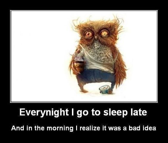 Every Night Quotes Quote Lol Funny Quote Funny Quotes Humor Sleep Late Go To Sleep Good Night Sleep Well